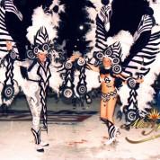 2004 - Ashé, fetiche de carnaval (46)